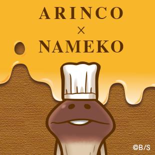 ARINCO × NAMEKO コラボ商品のお知らせ